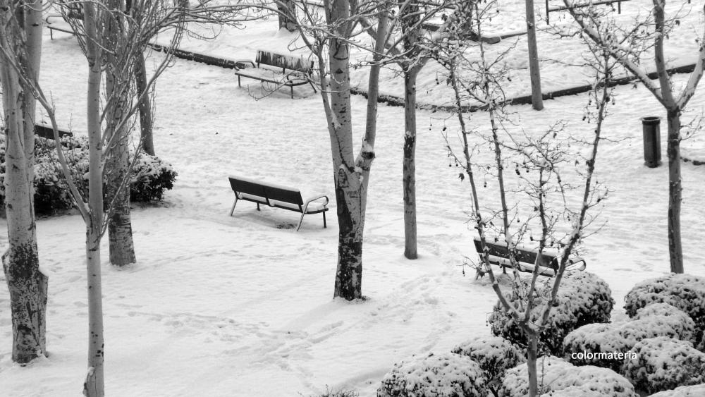 banco-nevado_cm